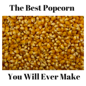 The Best Popcorn You Will Ever Make | roxie & lou